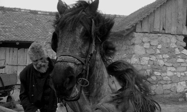 o-cavalo-de-turim-papo-de-cinema-600x360